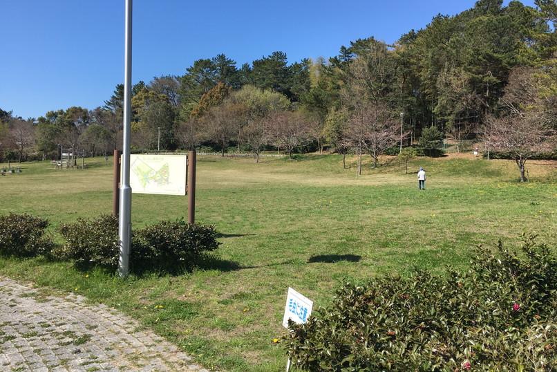 四ツ池公園の芝生広場