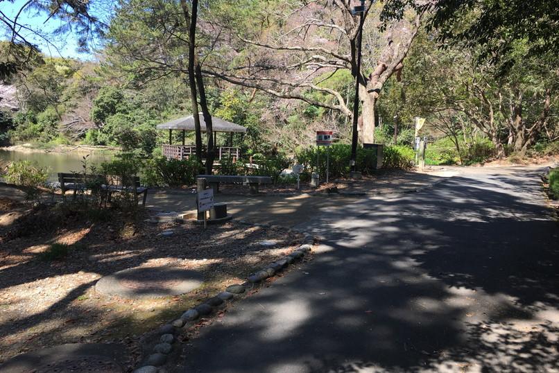 四ツ池公園の風景