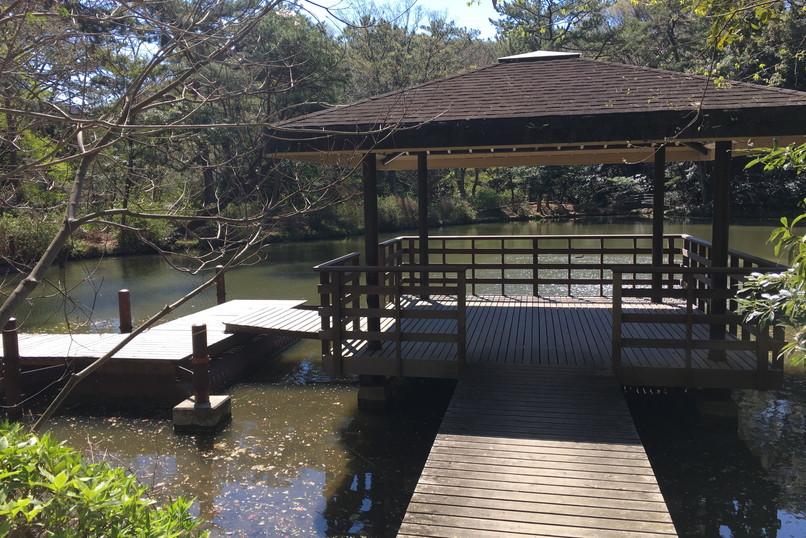 四ツ池公園の池