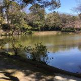 四ツ池公園の四ツ池