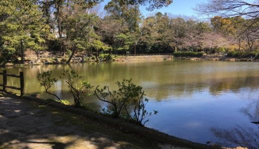 浜松市中区にある四ツ池公園を豊富な写真で詳しく紹介