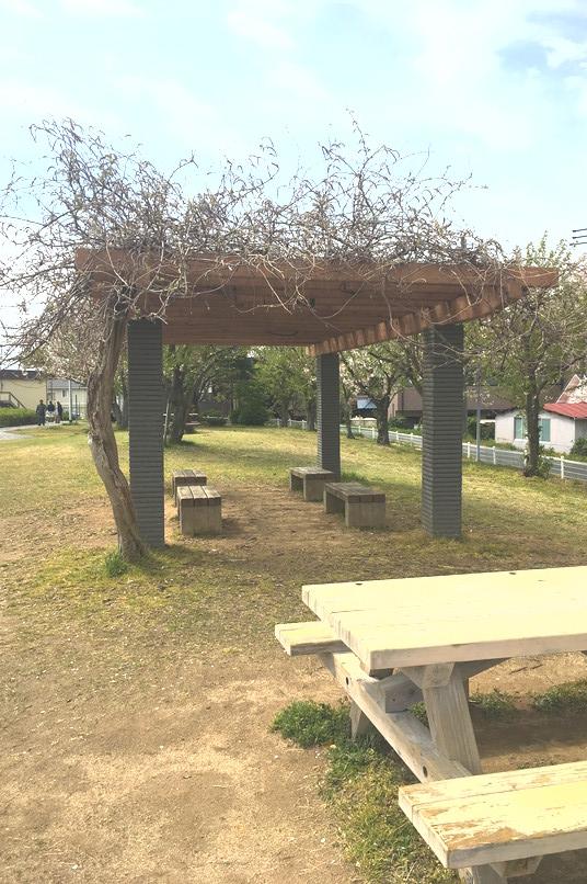 馬込川上島緑地のベンチ