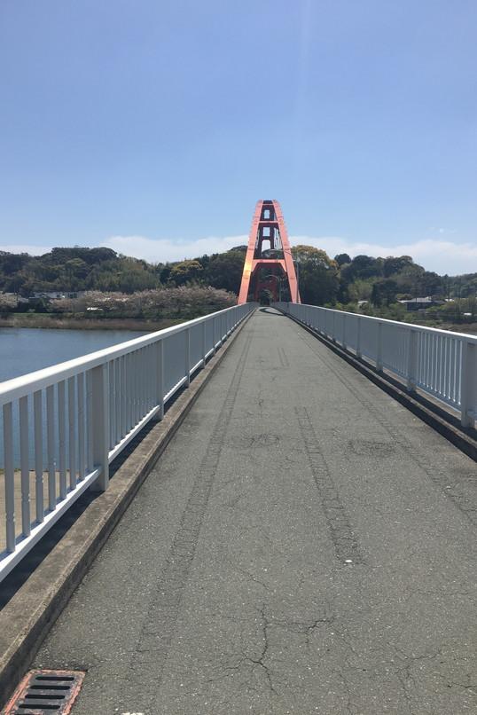 都田川桜堤の橋