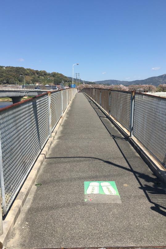 都田川桜堤近くの歩行者専用の橋