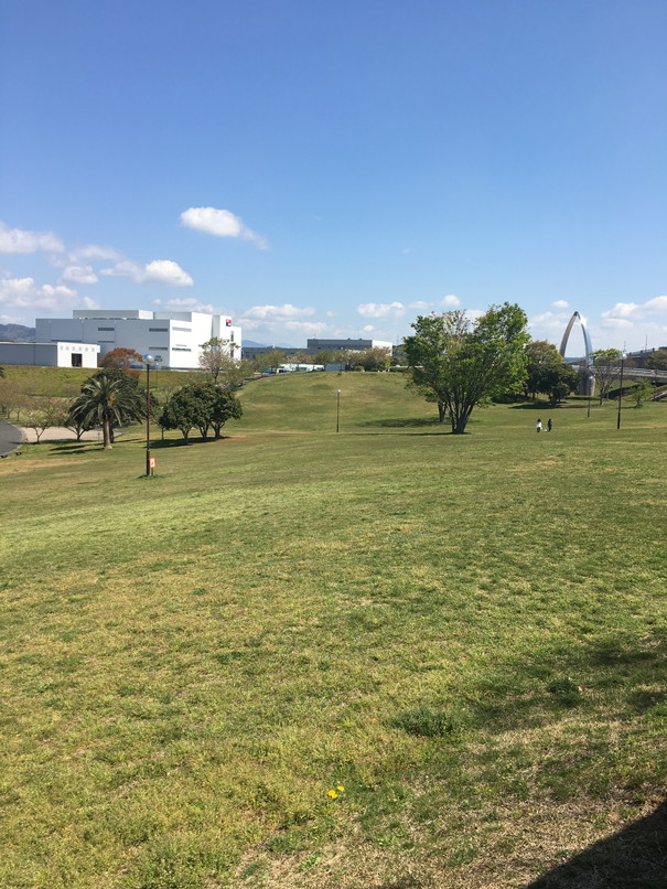都田総合公園の芝生広場