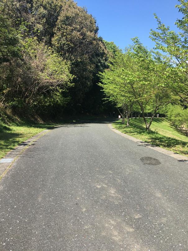 都田総合公園の長い坂道