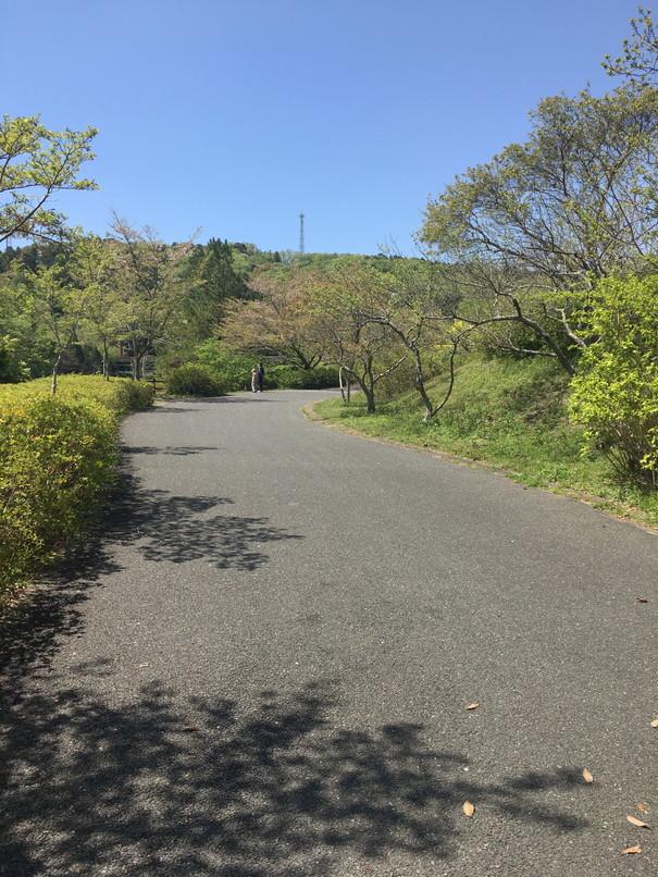 都田総合公園のウォーキング・ジョギングコース