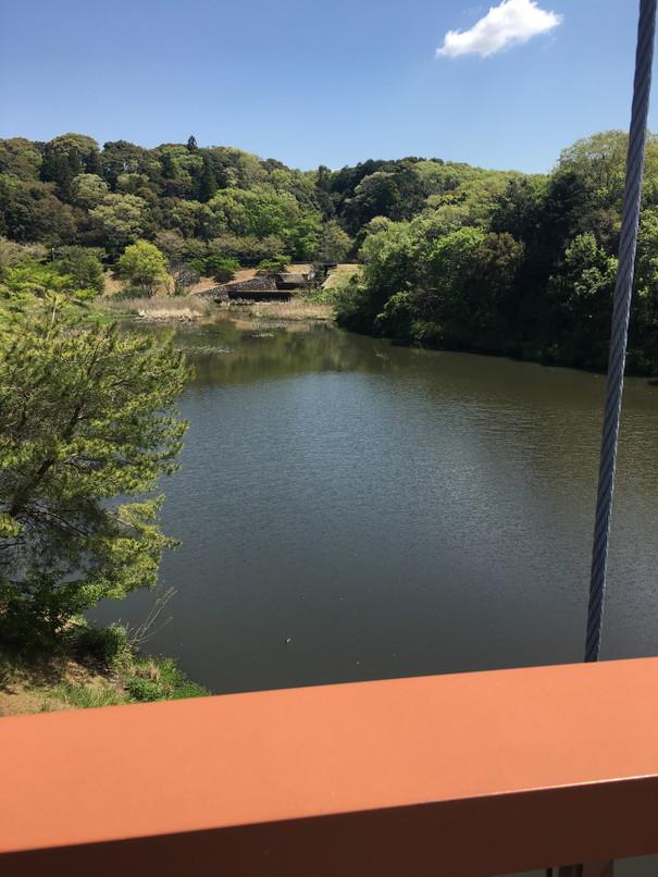 都田総合公園の橋