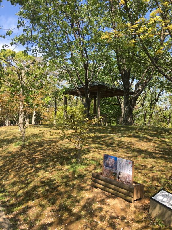 万葉の森公園の休憩スペース